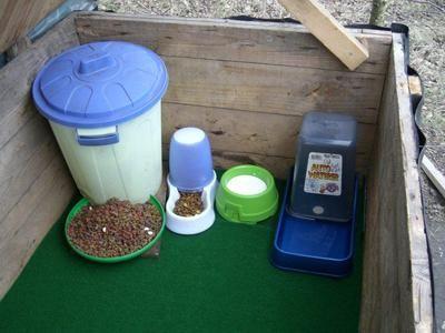 Wir suchen dringend tierliebe Menschen, die uns bei der Fütterung wildlebender Katzen an unseren 13 Futterstellen helfen wollen. Kosten werden natürlich komplett übernommen! ...