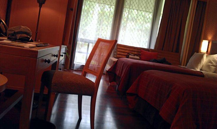 Rimba Papua Hotel