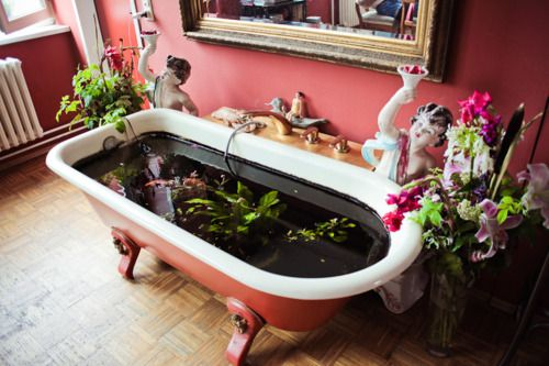 interior koi pond. wouldn't be what I would do with a pink claw-foot tub, buuuttt...