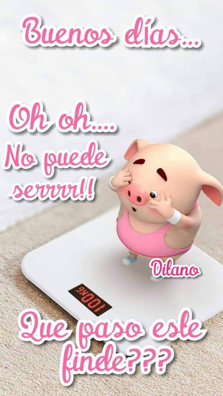 Caso divertido de la imagen del instagram del cerdo para el iPhone