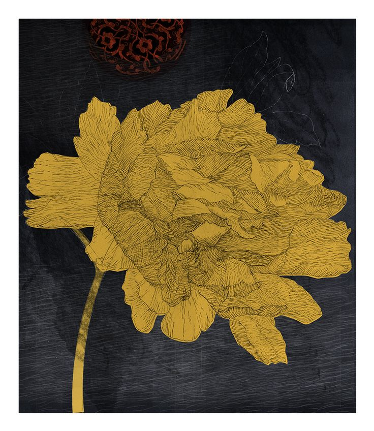 Kim Meek, Peony, 2013, from Dominion: an incomplete, unscientific and fanciful florilegium inspired by the library of JT Mackelvie
