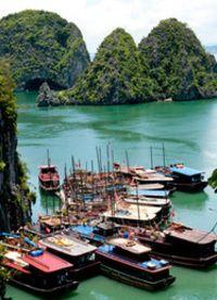 Certified English to Vietnamese Language Translation, Vietnamese Translator http://sco.lt/...