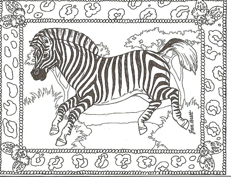 zoo animals coloring pages zebra - photo#21