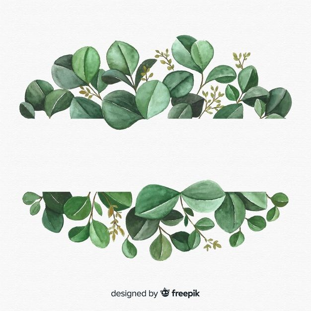 Download Hand Drawn Eucalyptus Leaves Background For Free In 2020