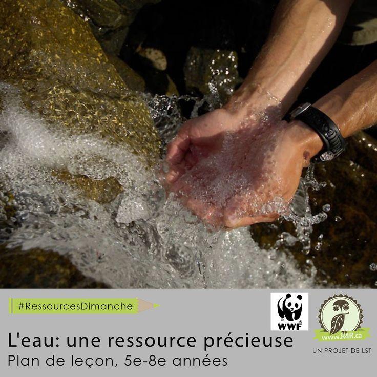 Cette semaine, pour #RessourcesDimanche de #R4R.ca, «L'eau-une ressource précieuse.» On y présente l'importance de l'eau, de cette ressource vue sous différentes facettes.