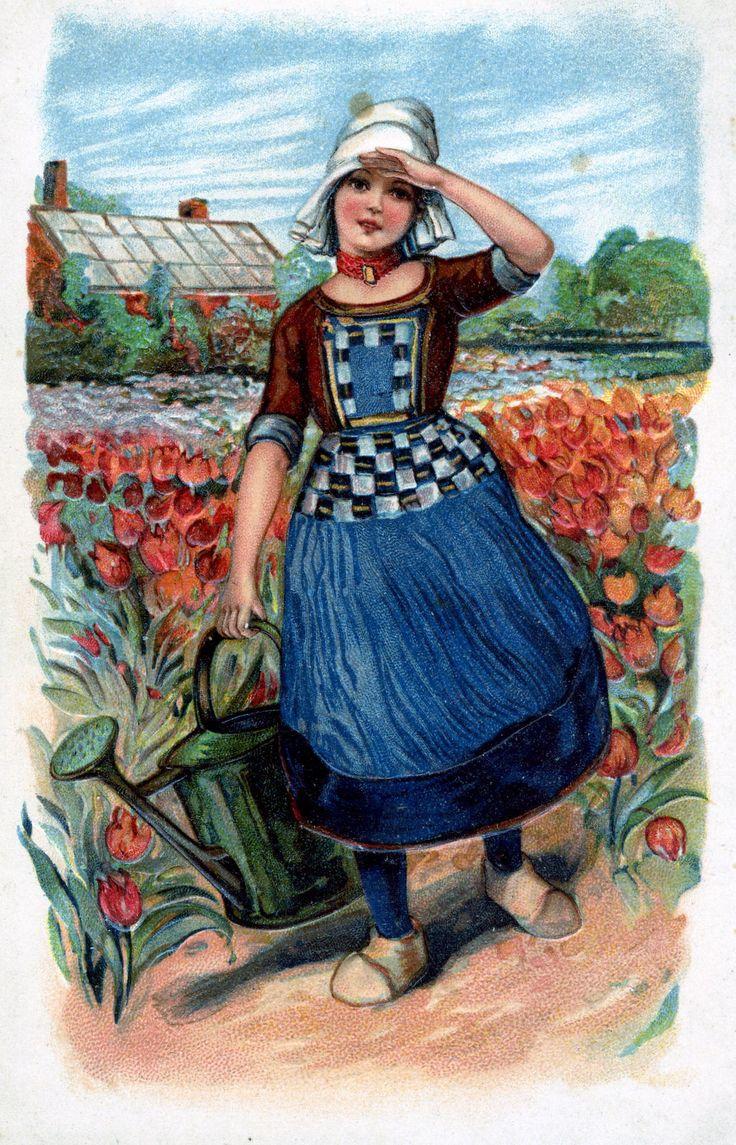 Vintage Dutch Postcard