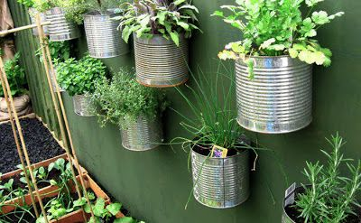 #risparmiare coltivando l' #orto sul #balcone (Parte 1)
