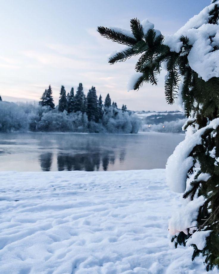 Frosty River #photography #naturephotography #nature #reflection #mirror #forest #forest🌲 #ice #river #riverwalk #snow #freezing #minus20celsius #visitnorway #visittrondheim #visittrøndelag #trøndelag