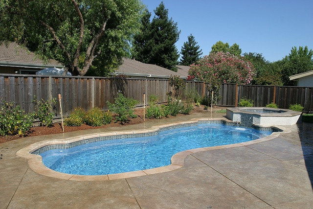 17 best images about freeform pool designs on pinterest for Pool design examples