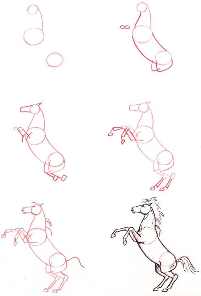 Learn to draw: Horse, rearing