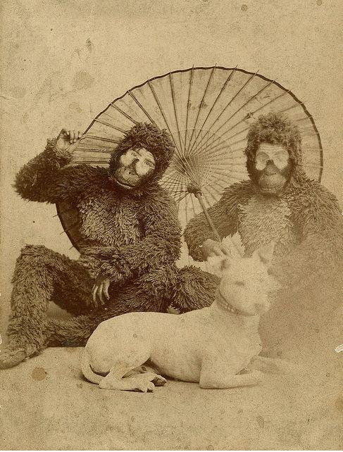 : Strange, Creepy, Dogs, Vintage Photos, Vintage Photography, Weird, Black White Photos, Monkey