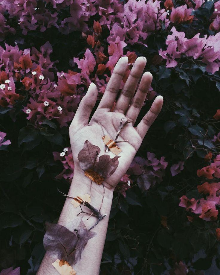 100 Best Flora Images On Pinterest Floral Arrangements