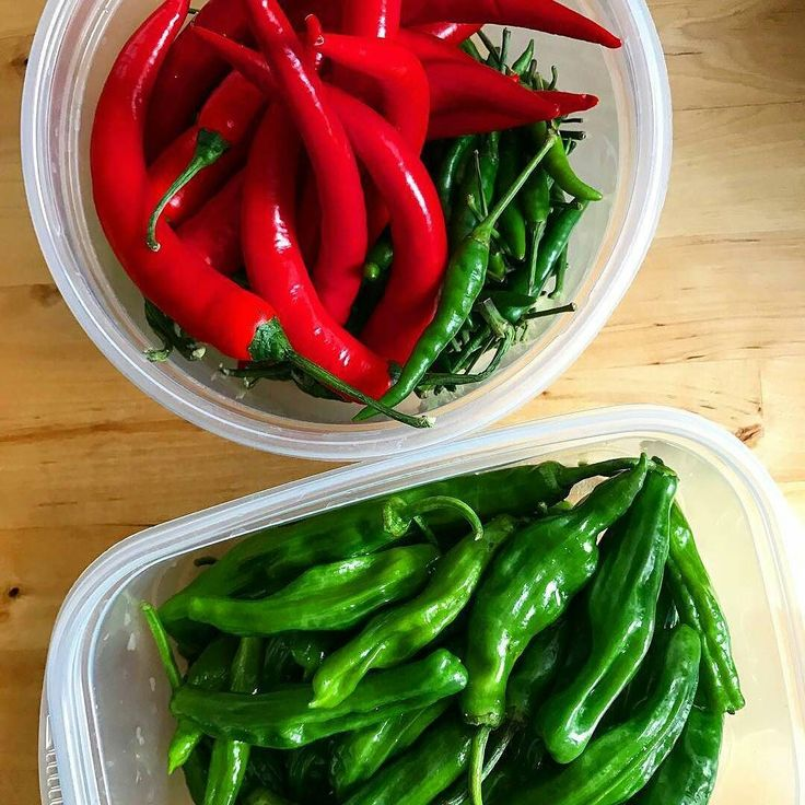 Awesome pic of a couple varieties. ..... do you want to see more chilli pics or Hot Sauce pics???????? . . .     @layuja