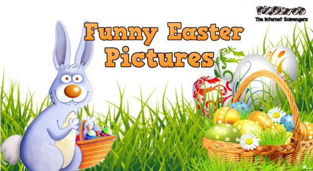 Funny Easter pictures – The Best of Easter humor | PMSLweb