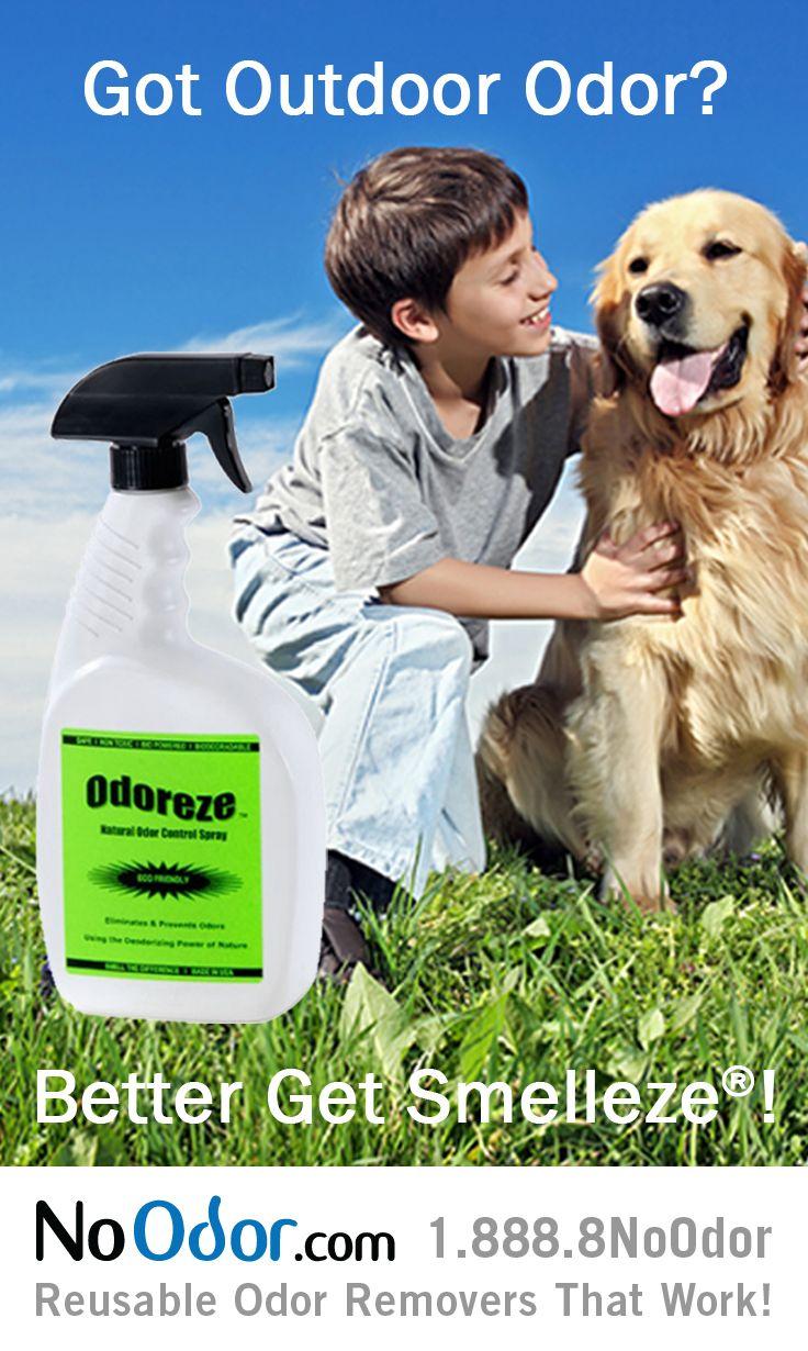 Natural Deodorizer For Dog Poop