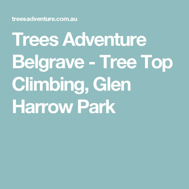 Trees Adventure Belgrave - Tree Top Climbing, Glen Harrow Park