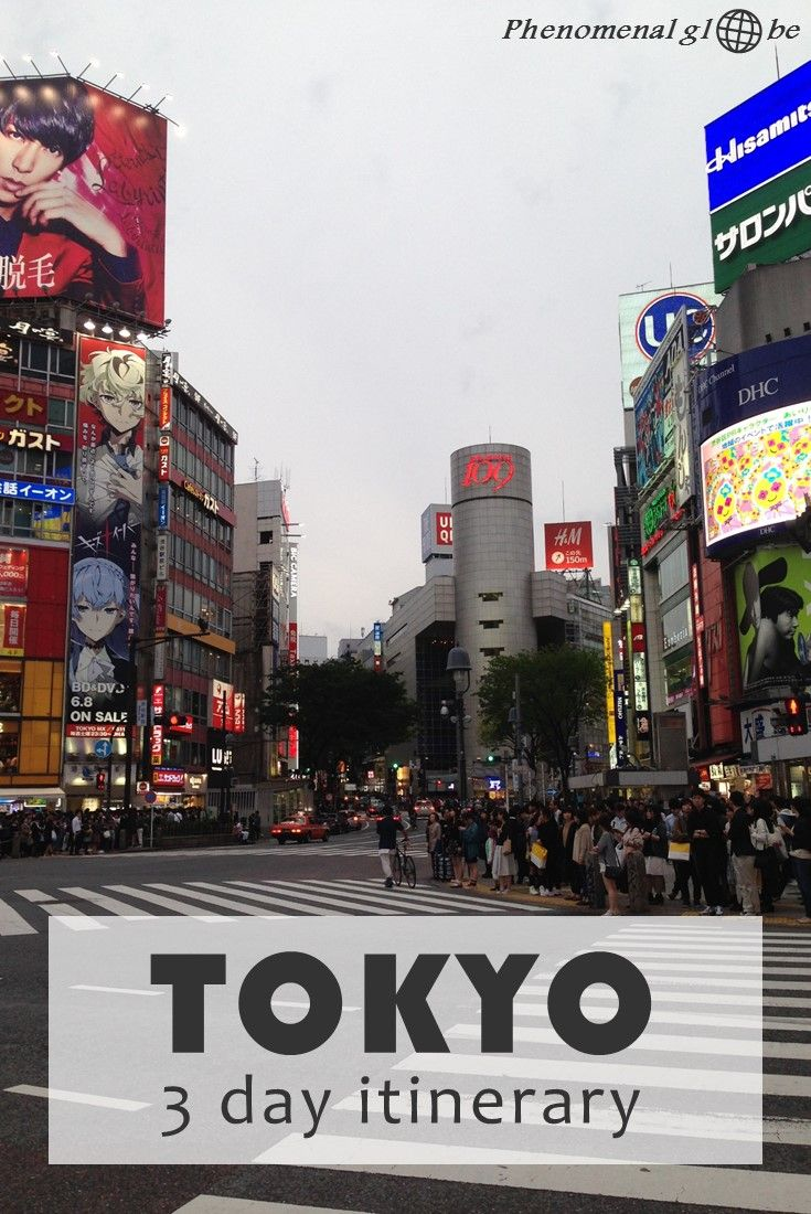 3 day itinerary for Tokyo: budget information, Tokyo highlights, recommended accommodation, transport information, food advice and budget saving tips!
