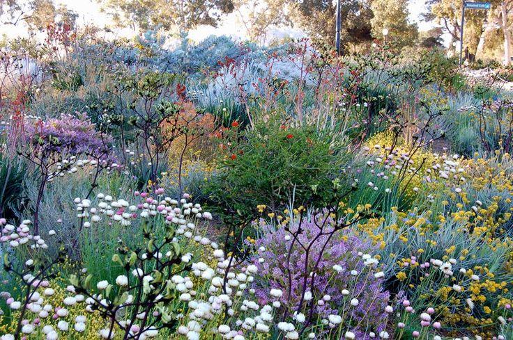 Perth Botanical Gardens @Petal Pedrova and twig blog. Painterly Perfect!