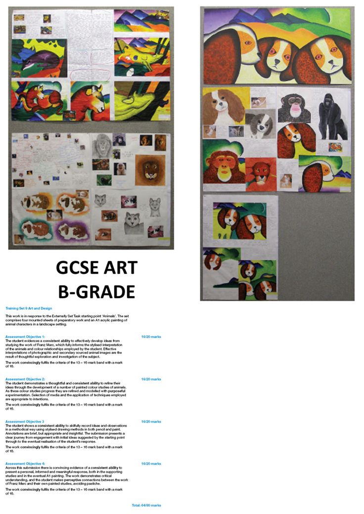 I need some help on what to do my gcse art project on?