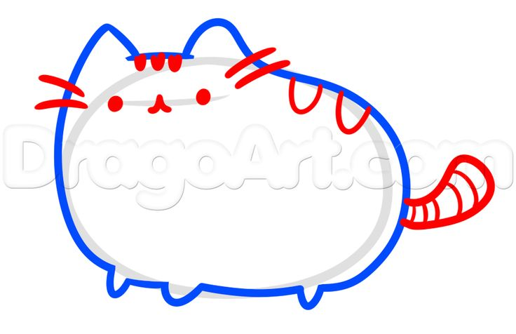 how to draw pusheen, the facebook cat step 3