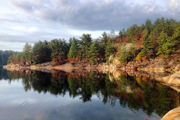 Ontario provincial parks beckon during the fall with their stunning foliage and magical sunsets. It's time to get out of Toronto and explore the province before the cold weather sets in and you never want to leave your apartment. Before you go, check out this handy fall colour report to...