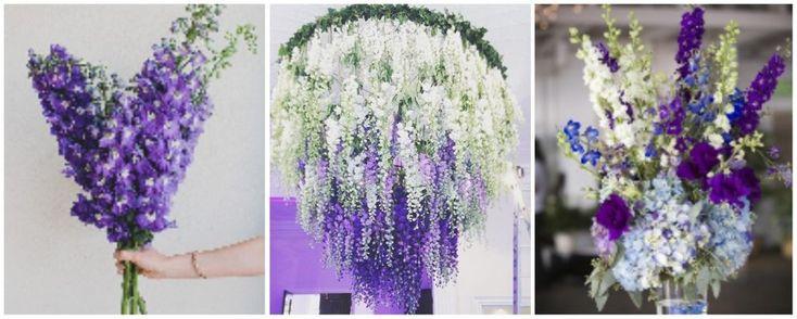 delphinium - aranjamente florale nunta alb-lila-mov - flori in culoarea anului 2018: ultraviolet