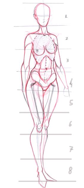 Today's Drawing Class: Drawing the Female Body | Female proportions