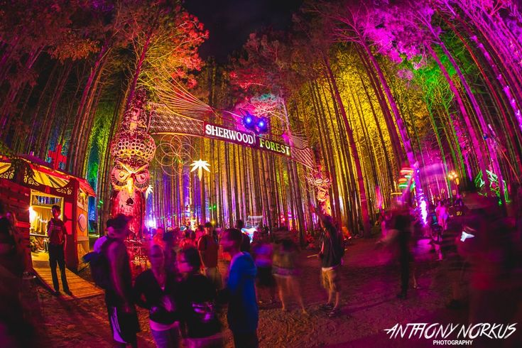 The Electric Forest Lineup For 2017 Is Here | Your EDM