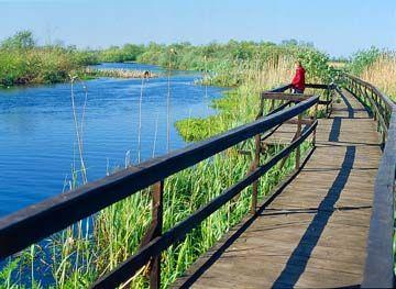 Narwiański Park Narodowy2