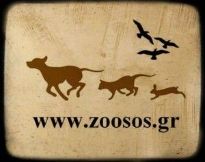 zoososlogo