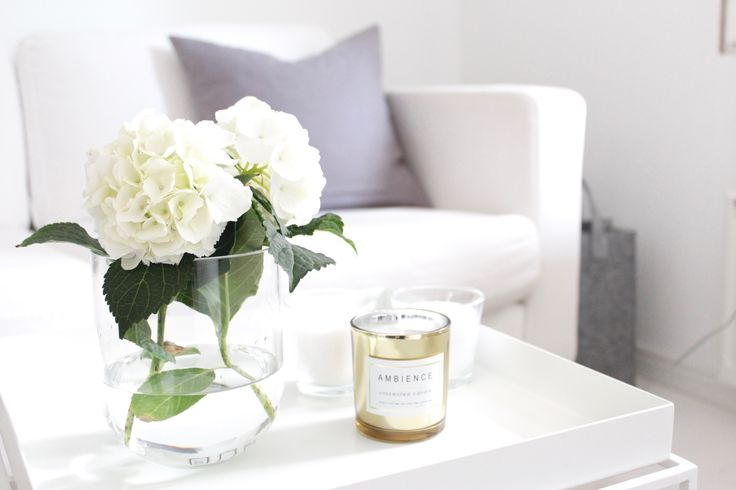 White hydrangea | Home Vanilla