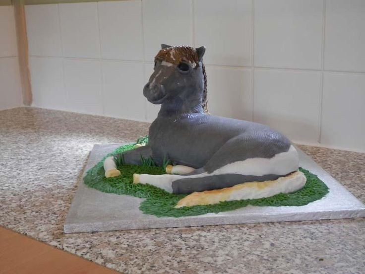 #Falabella #Horse Novelty Cake. Check out more pictures on http://facebook.com/BecclesCrumbsofJoy … enjoy!!!