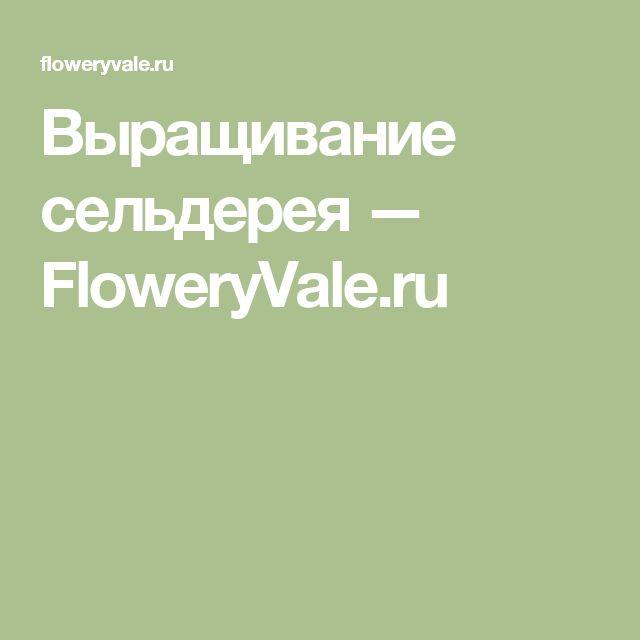 Выращивание сельдерея — FloweryVale.ru