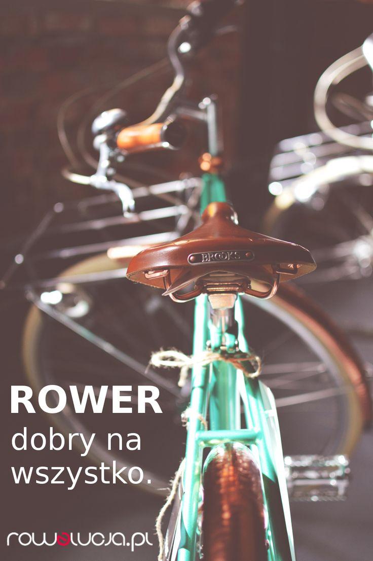 Rower dobry na wszystko :-) Szczególnie ten z rowelucja.pl :)