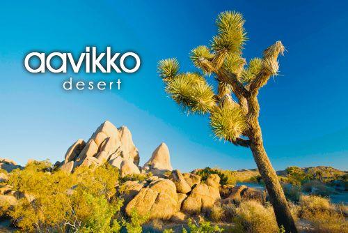 aavikko ~ desert