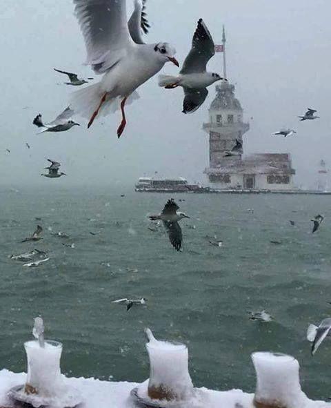 Maiden's Tower - Istanbul Turkey