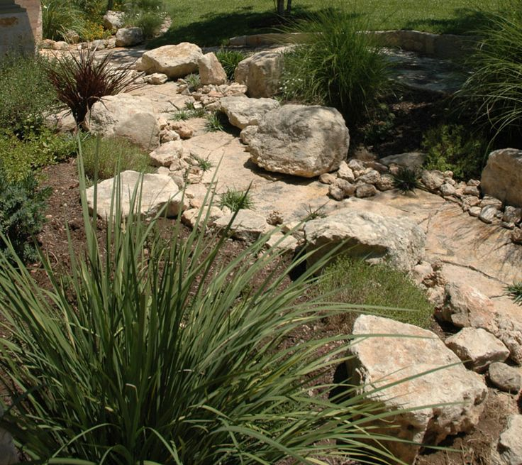 34 best images about pool on pinterest colorado springs for Dry landscape design