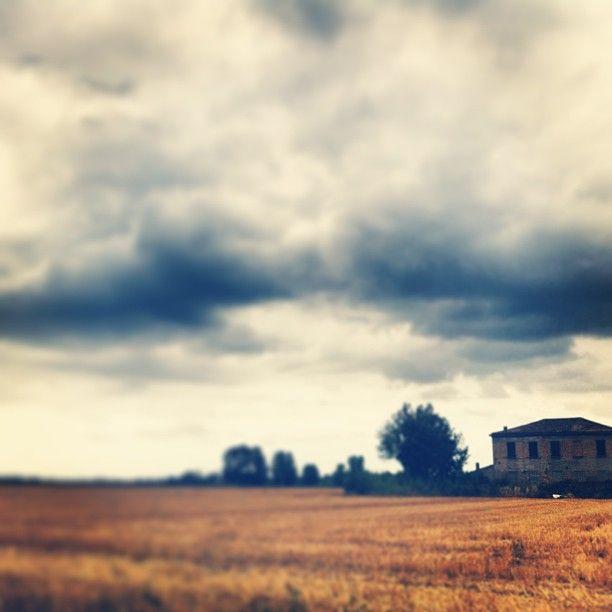 giornata grigia in campagna  www.weekendagogo.it #weekendagogo #campagna #romagna