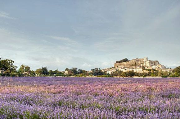 Waves of fragrant lavender surround this picture-perfect Rhone-Alpes village near Provence. Grignan, which dates back to the 11th century, was made famous by letters Madame de Sevigne wrote to her daughter, who lived here in the 17th century.   The most impressive Grignan sight is the majestic Renaissance castle, now a museum, sheltered behind high walls at the village's core. The ancient homes around it have been converted to hotels and B: France Photo, Dreams Places, Lavender Fields, Beautifulplaces, Grignan France, Beautiful Places, Lavender Surroundings, High Wall, Beautiful Grignan