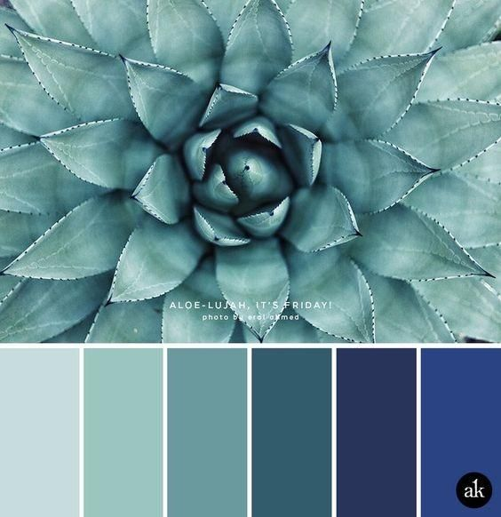 A beautiful range of light to bright hues of ice blue to marine blue. Excellent tool when working with shades like this. Thank you for sharing whoever you are~ Bunny