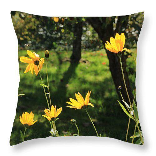 Garden Throw Pillow featuring the photograph Garden by Sverre Andreas Fekjan