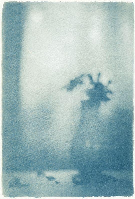 ***, cyanotype