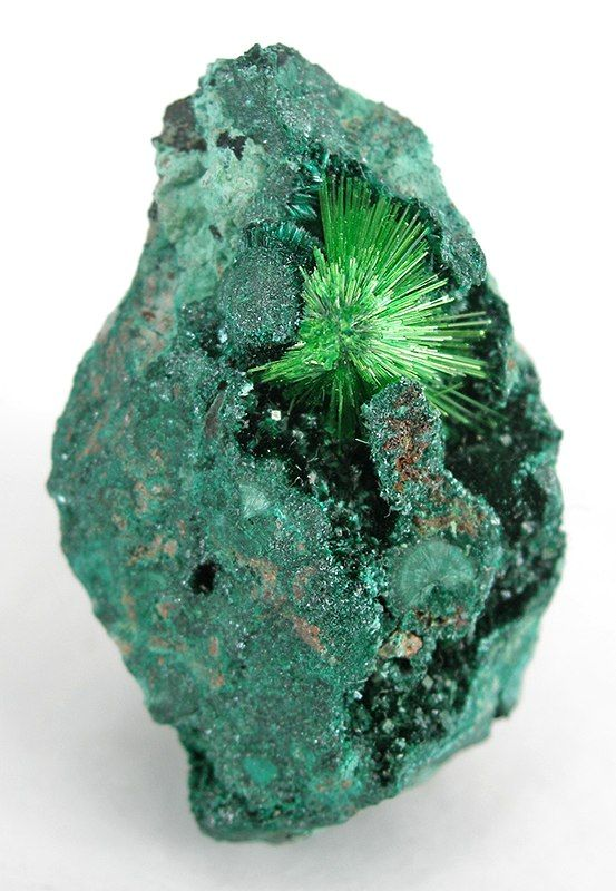 CuprosklodowskiteCongo, Crystals, Emeralds Cities, Nature, Rocks Minerals Gem, Colors, Green, Flats, Cuprosklodowskit