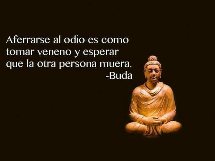 Aferrarse al odio es como tomar veneno y esperar qie la otra persona muera. Buda