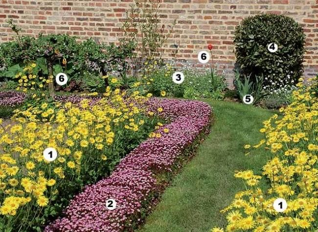 Scènes fleuries sans entretien : potager en carré brodé