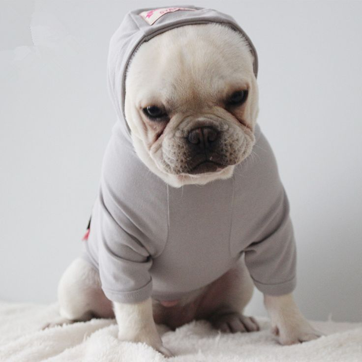 French Bulldog Dog Clothes corgi pug Dog Hoodie Coat Jacket Cat Clothes Chihuahua Clothing Puppy Costume Big Dog hoody //Price: $36.66 & FREE Shipping //     #frenchbulldog #bulldog #bulldoglovers