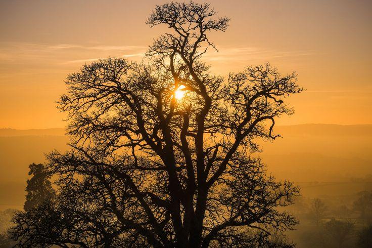 #Landscape #photography at #sunrise