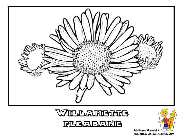 Kids Book Coloring Flower Online Pages Of Printouts Free The Secret To Easy Flowers Is