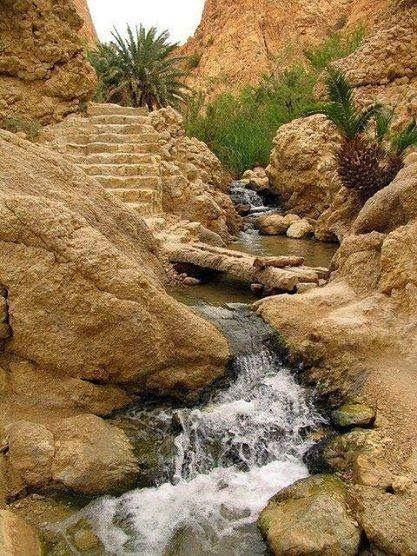 Sahara Douz - Tunisia