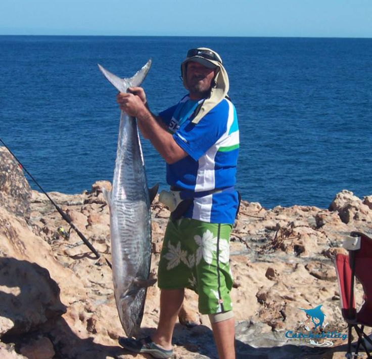 """Spanish mackerel caught by Jon. """"Caught this at steep point balloon fishing.""""  #Fishing with Catchability"""